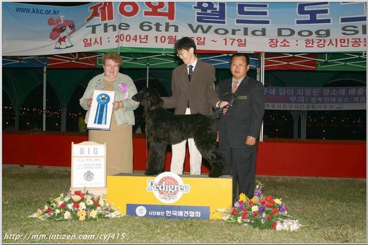 Kissy made her first appearance at the largest show in Korea 